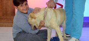 Osmangazi'den öğrencilere hayvanlarla iletişim dersi