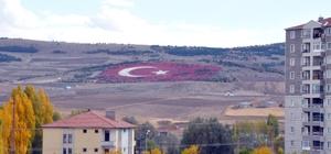20 bin taş kullanılarak Türk Bayrağı yapıldı