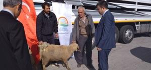 Emet'te 3 çiftçiye 111 küçükbaş hayvan dağıtıldı