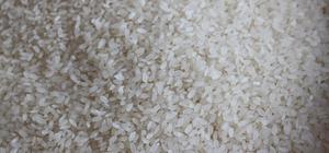 Tosya pirincine coğrafi işaret verildi