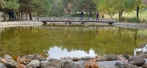 Sonbahar Japon Bahçesi'ne güzellik kattı