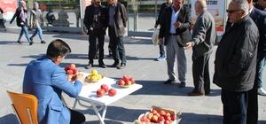 Elmadan 5,1 metre uzunluğunda kabuk soydu