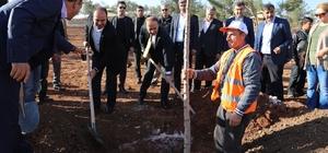 'Şehrimi seviyorum ağacımı dikiyorum' kampanyası devam ediyor