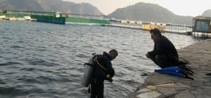 Çevreciler yunus parkının kapatılması için Bakan Fakıbaba'ya başvurdu