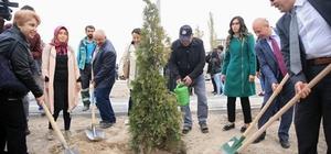 Kocasinan, bu sefer diyabet farkındalığı için ağaç dikti