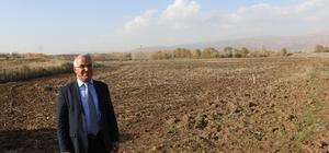 Bingöl Belediyesi kendi bitkisini yetiştirecek