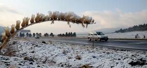 Kars'ta kar yağışı ve soğuk hava