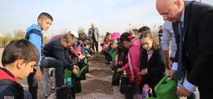 Çolakbayrakdar, öğrencilerle birlikte palamut tohumu ekti