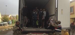 Erzincan da 171 mülteci, TIR kasasında yakalandı