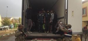 Kaçak göçmenler tır dorsesinde yakalandı