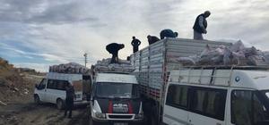 Sincik ilçesinde kömür dağıtımı başladı