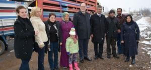 Suşehri'nde genç çiftçilere küçükbaş hayvan dağıtıldı