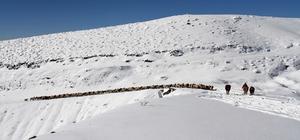 Besicilerin karda zorlu yolculuğu
