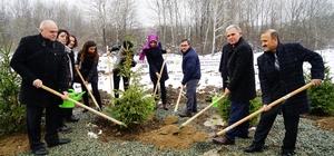 """Kastamonu'da """"24 Kasım Öğretmenler Günü Hatıra Ormanı"""" oluşturuldu"""