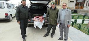 Kaçak yaban keçisi avına 16 bin lira ceza