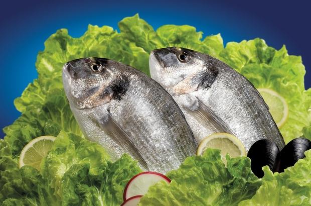 ge balıkları İsrail'e uçuyor