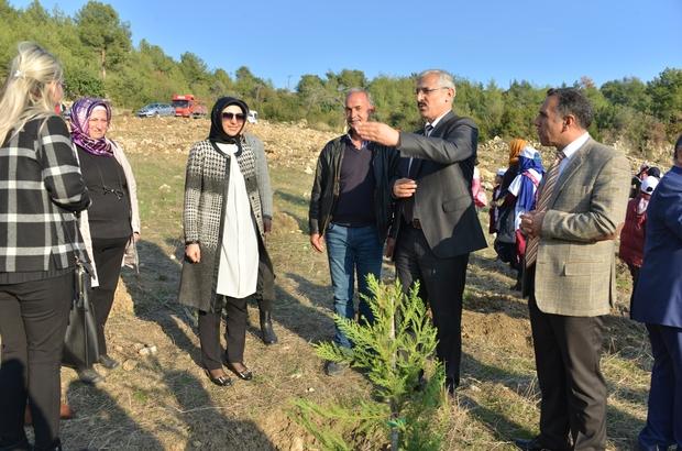 Mersin'de gönül elçileri fidan dikti