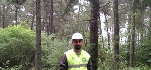 Orman Mühendisi Atilla Yılmazer;