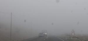 Siirt'te yoğun sis