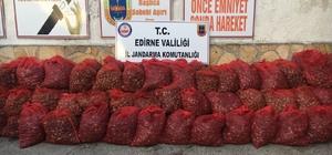 Edirne'de kaçak midye operasyonları