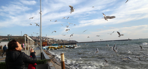 Lodos deniz ulaşımını olumsuz etkiledi
