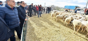 İzmir'de tarım böyle gelişiyor