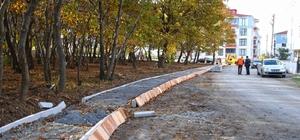 Bafra Belediyesi Kent Ormanı kurma çalışmalarına başladı