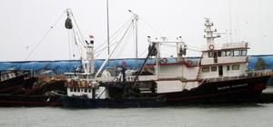 Kuvvetli rüzgar balıkçıları limana demirletti