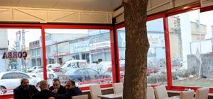 (Özel haber) Ağaç sevgisi çınarın üzerine lokanta kurdurdu