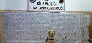 Kilis'te 8 bin 450 paket kaçak sigara yakalandı