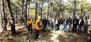 ntalya'da Ağaç Kesme ve Boylama Operatörlüğü kursu