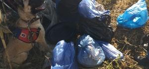 Mersin'de 6 kilo 850 gram esrar ele geçirildi