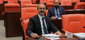 "AK Parti'li Alim Tunç; ""Meclis çocuk parkı değildir"""