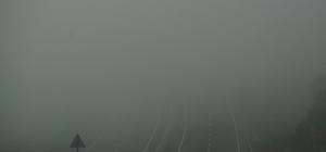 Aydın-Muğla karayolunda yoğun sis