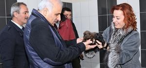 Vali Zorluoğlu, hayvan bakım evini ziyaret etti