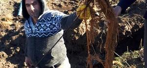 Köylüler su sorunlarını kendileri çözdü