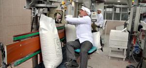 Muş'ta 420 bin ton şeker pancarı alındı