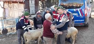 Antalya'da hayvan hırsızları yakalandı