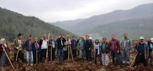 Kahramanmaraş'ta trüf mantarı bahçesi kuruldu
