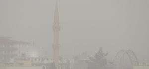 Araban'da yoğun sis hayatı olumsuz etkiledi