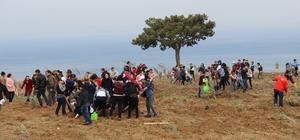 Hatay'da köylüye destek için 8 bin zeytin fidanı dikildi