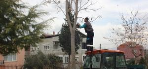Alaşehir Belediyesinden ihtiyaç sahibi ailelere yardım eli