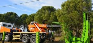uğla Büyükşehirden ağaçları koruyan yatırım