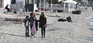 Bodrum'da ocak güneşi sahilleri coşturdu