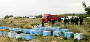 Mersin'de arı kovanı hırsızlığı