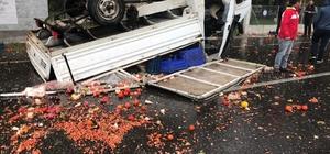 Köyceğiz'de domates yüklü kamyonet takla attı