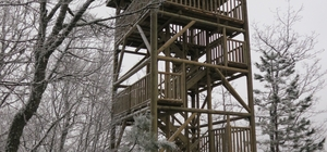Yaban hayat için gözetleme kuleleri yapıldı