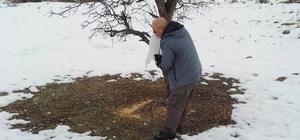 Tunceli'de yaban hayvanları için yem desteği