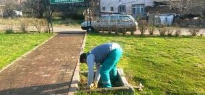 İzmit Belediyesi parkalarda bakım yapıyor