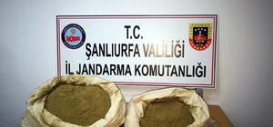 Şanlıurfa'da 25 kilo toz esrar ele geçirildi